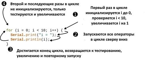 for цикл программы